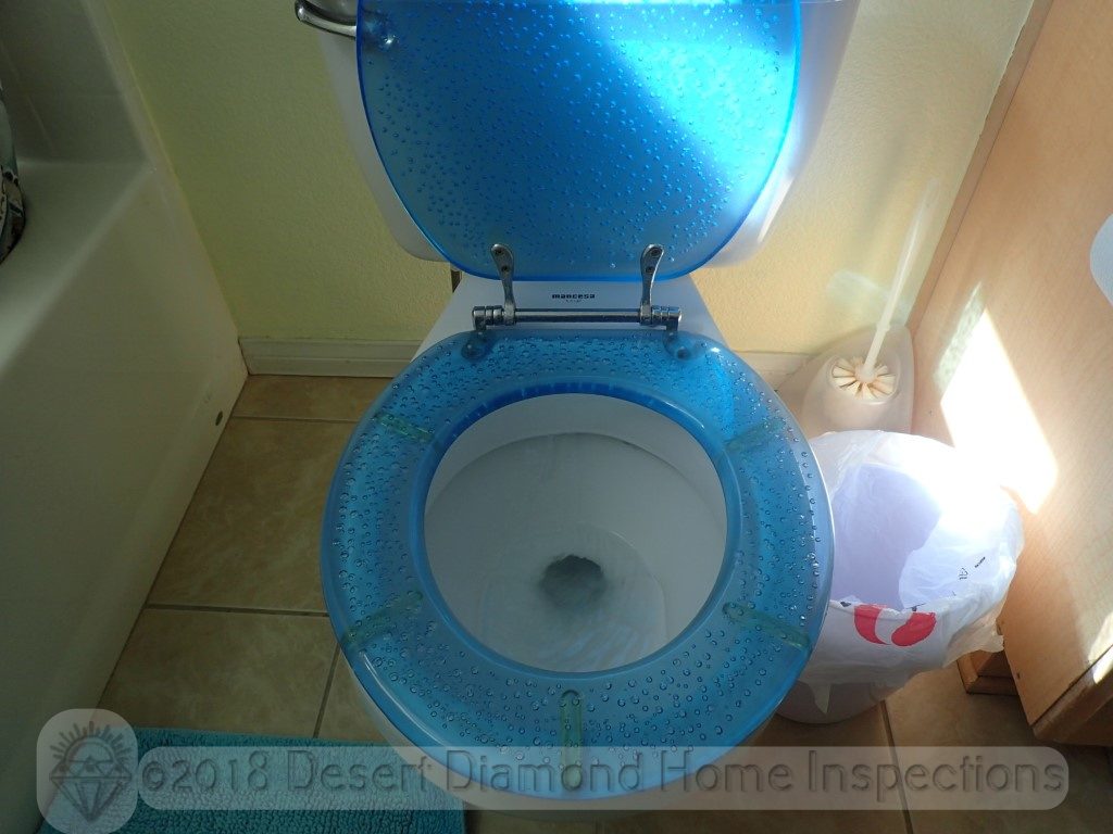 How's this for a custom toilet seat?
