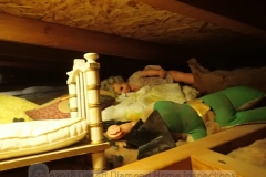 Dismembered dolls and toys found in an attic