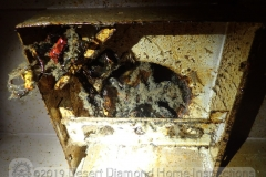 We found this greasy gross mess at a vent hood over a range.