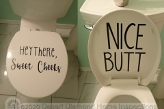 Is that toilet flirting with me?