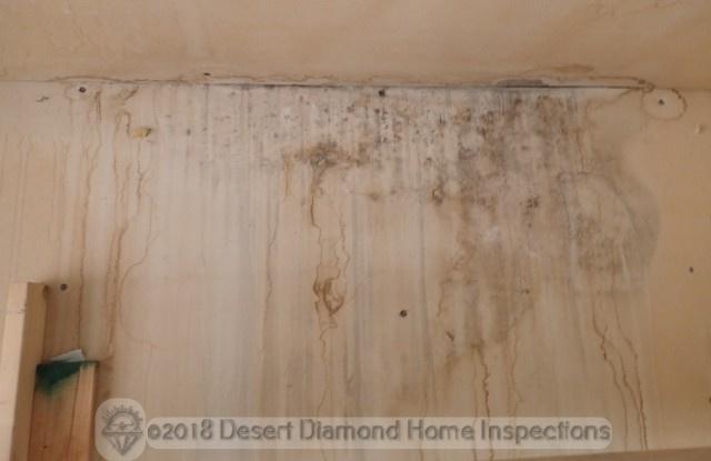 Mold at wall
