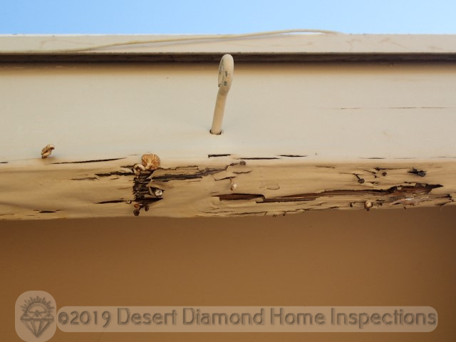 Damaged fascia