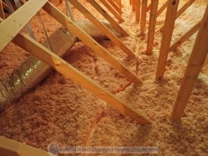 Rodent tracks in attic